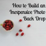 Photo Back Drop DIY