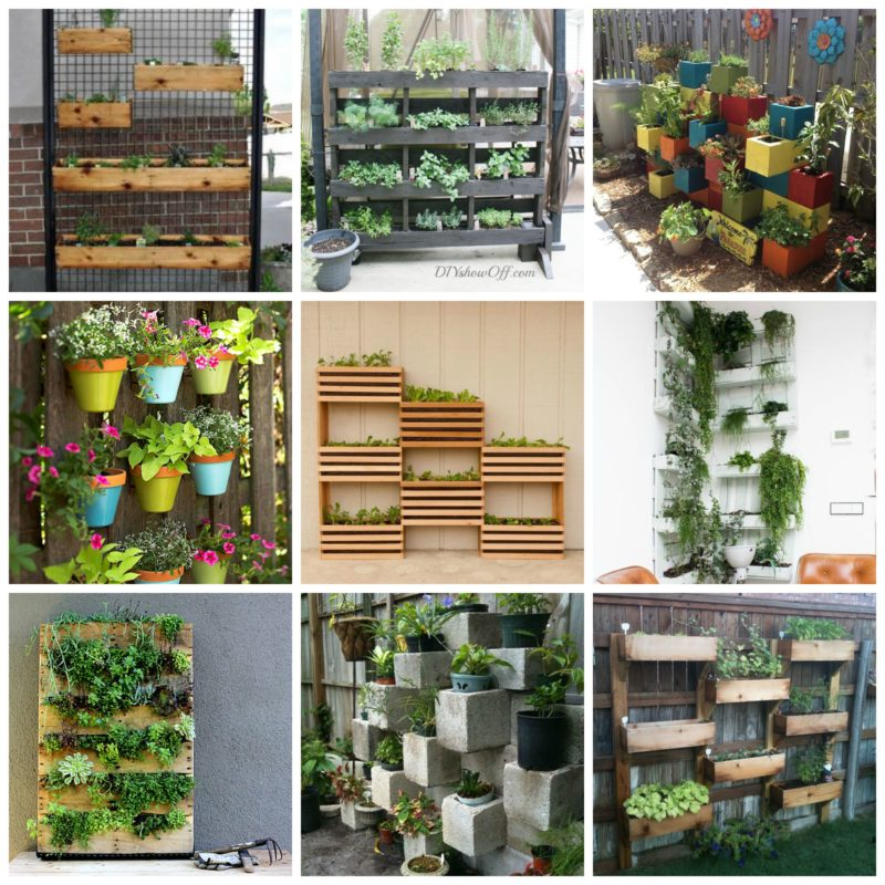 Vertical Garden Plan