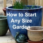 How to Start Any Size Garden