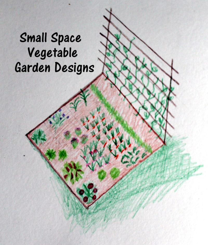 Small space vegetable garden designs for Small space vegetable garden design