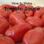 How to Make a Tomato Sauce from Scratch