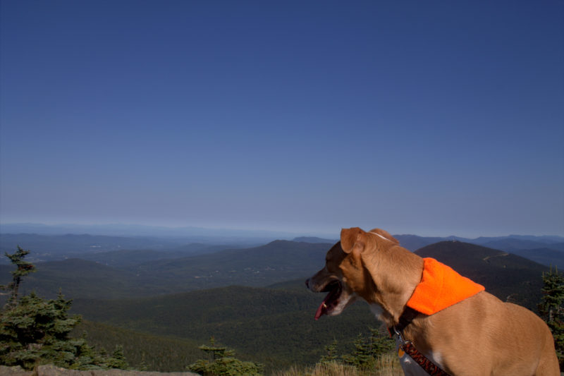 Brody Hiking Mount Killington