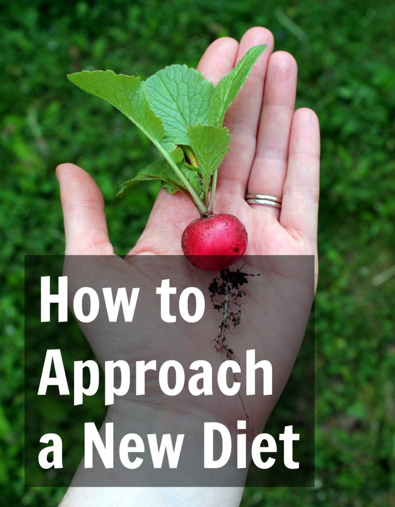 How to Approach a New Diet