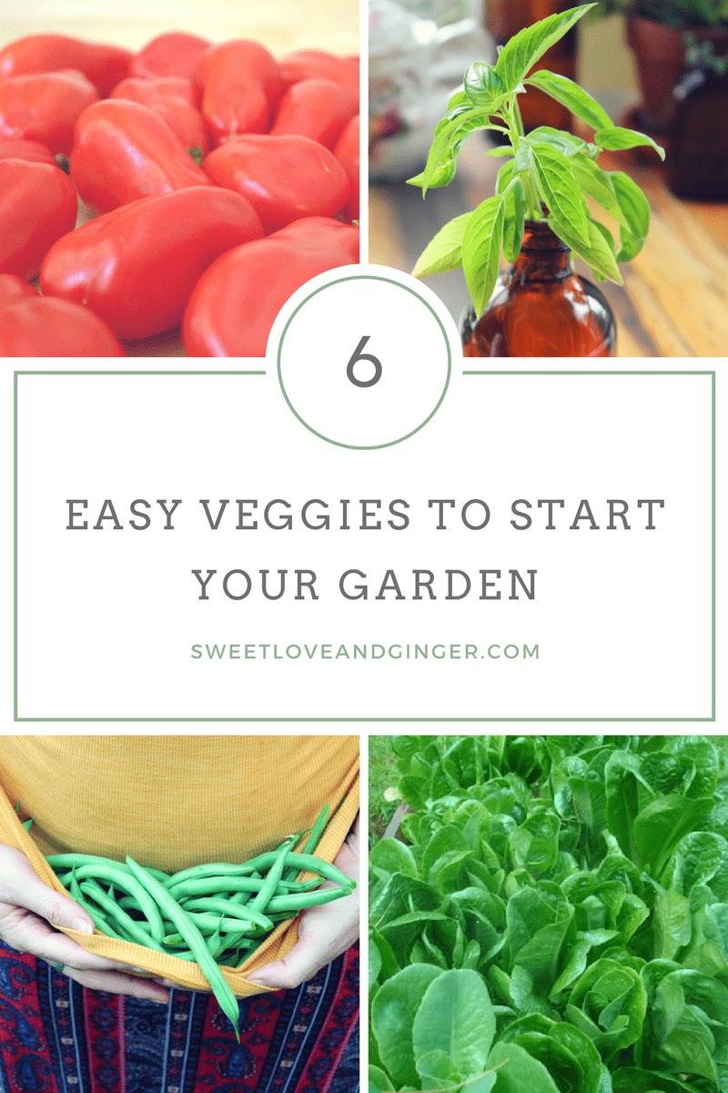 6 Easy Veggies to Start your Garden