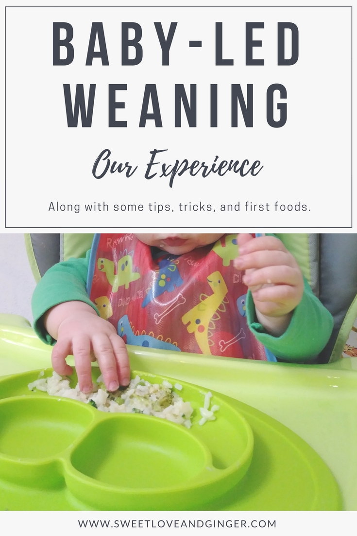 Baby-led Weaning Our Experience