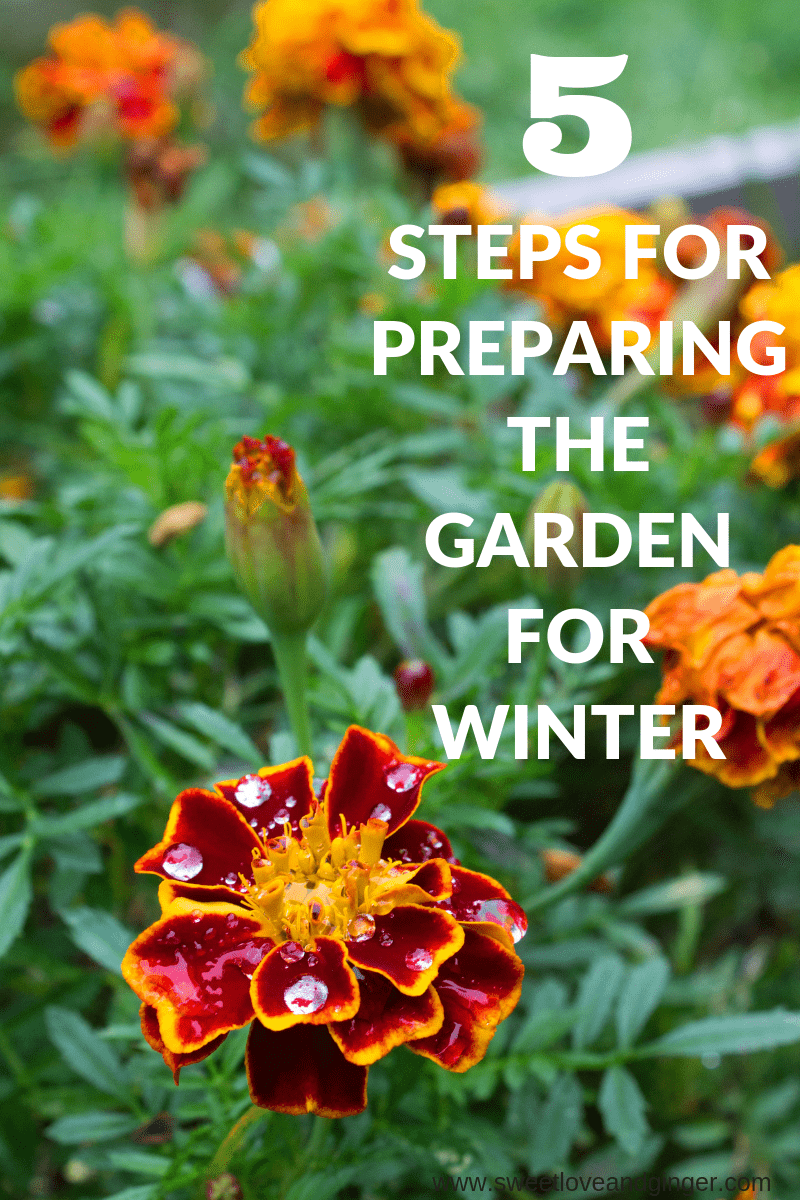 6 Steps for Preparing the Garden for Winter