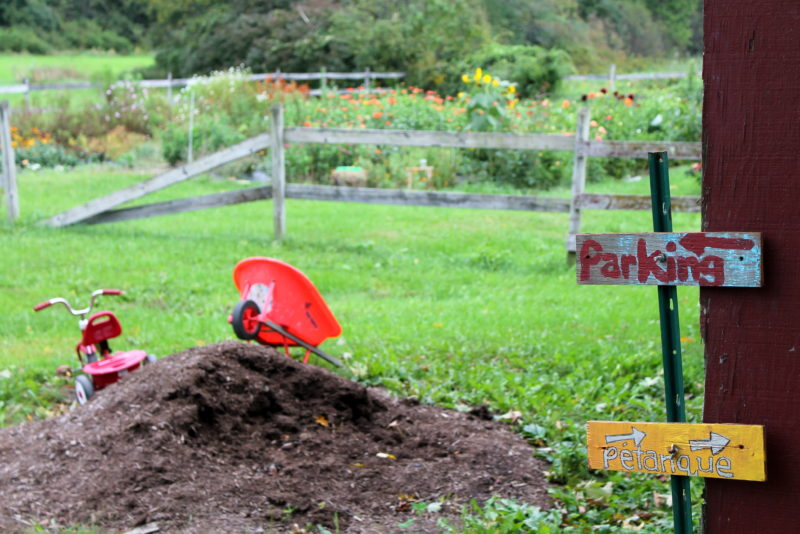 Goode Farm: It's Not a Typical CSA